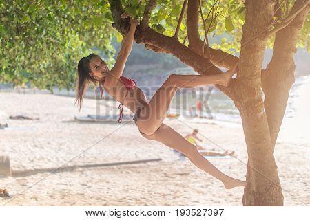 Happy slim Caucasian girl in bikini having fun hanging or climbing tree at beach resort