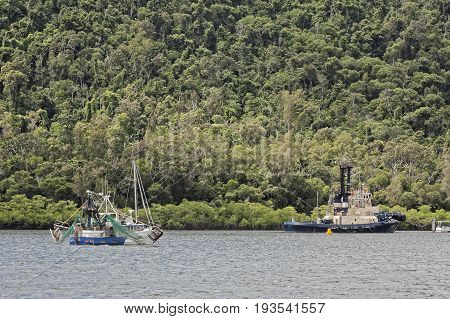 fishing trawler in the Cairns Harbor with the tropical rainforest in the background