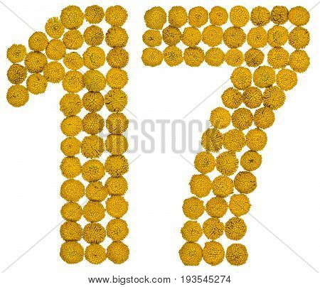 Arabic Numeral 17, Seventeen, From Yellow Flowers Of Tansy, Isolated On White Background