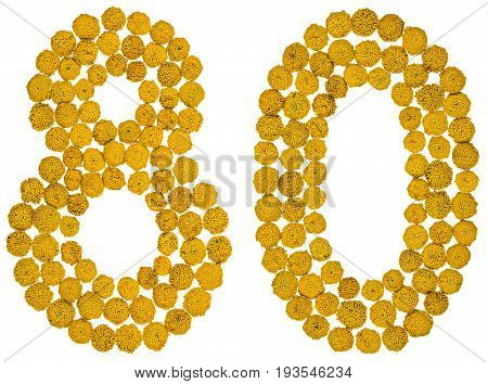 Arabic Numeral 80, Eighty, From Yellow Flowers Of Tansy, Isolated On White Background