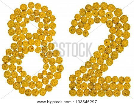 Arabic Numeral 82, Eighty Two, From Yellow Flowers Of Tansy, Isolated On White Background
