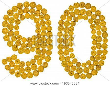 Arabic Numeral 90, Ninety, From Yellow Flowers Of Tansy, Isolated On White Background