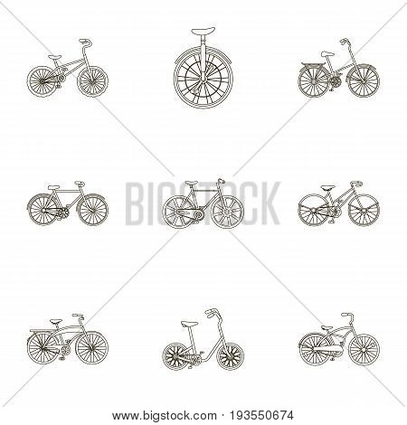 Collection of bikes with different wheels and frames. Different bikes for sport and walks.Different bicycle icon in set collection on outline style vector symbol stock web illustration.