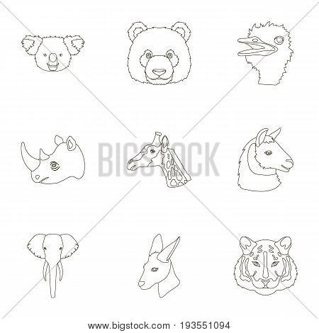 A set of icons of wild animals. Predatory and peaceful wild animals.Realistic animal icon in set collection on outline style vector symbol stock web illustration.