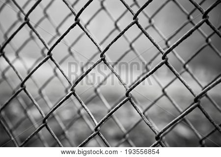 close-up of rusty steel mesh fence very shallow depth of field. Black & White.