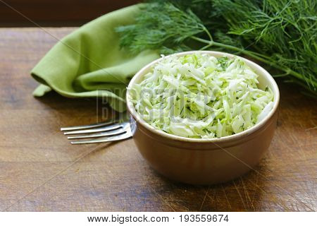 Cabbage Cole Slaw salad , with dill
