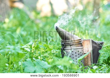 Close up of a metal old fashioned bee smoker in the grass in apiary copyspace farm farming organic apiculture beekeeping concept.