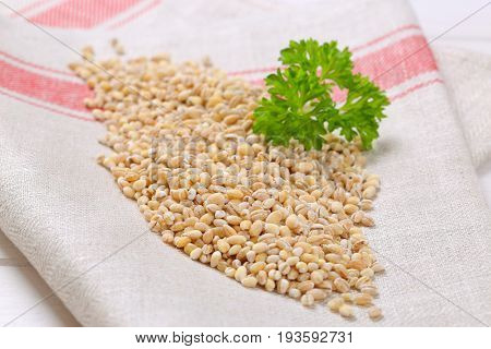 pile of pearl barley on folded place mat - close up