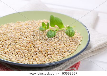 plate of pearl barley on folded place mat - close up