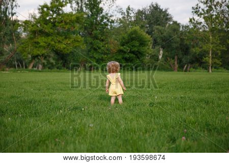 Young baby girl dressed in yellow dress with bouffant of curly hair walking green meadow.