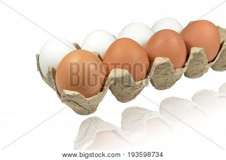 Raw eggs lie in container of porous cardboard. In one row - white eggs, in other - brown. Isolated on white background