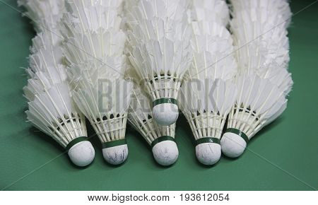 Stack of white colour shuttlecock in badminton courts