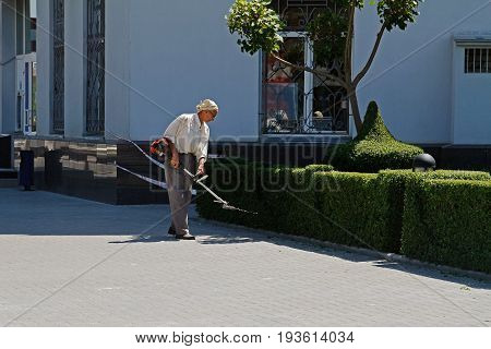 Volgograd Russia - June 13 2015: Man is trimming shrubs with gasoline telescopic hedge trimmer in street in Volgograd