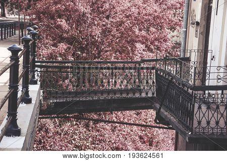 metal bridge connecting sidewalk and commercial tenements pink tree