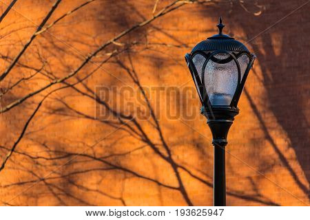 A streetlight on the background of a brick wall with shadows of bare branches of trees