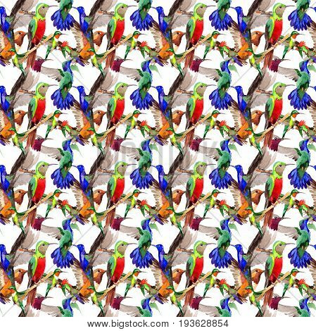 Sky bird colibri pattern in a wildlife by watercolor style. Wild freedom, bird with a flying wings. Aquarelle bird for background, texture, pattern, frame, border or tattoo.