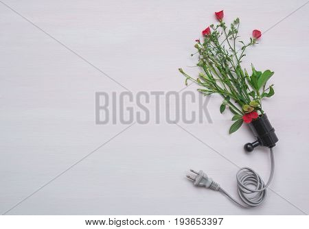 Electric plug with red flower. Fresh red flower in plug for nature energy with copy space.