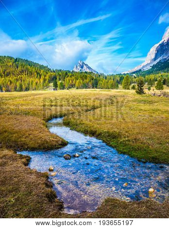 The concept of ecological tourism. Cold fast stream flows through the grassy valley. The dizzying Dolomites