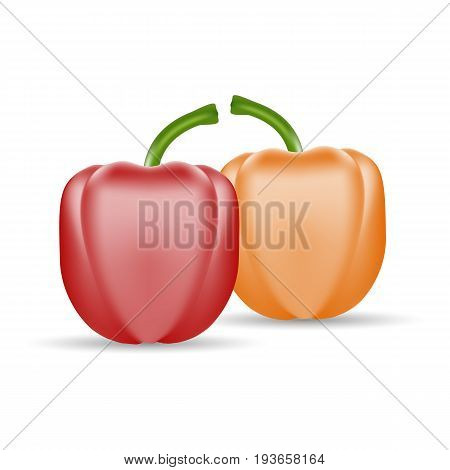Vector Set Of Colored Yellow And Red Sweet Bulgarian Bell Peppers, Paprika Isolated On A White Background. Realistic Vector Illustration.