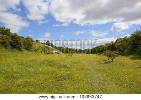 Quarry Nature Reserve