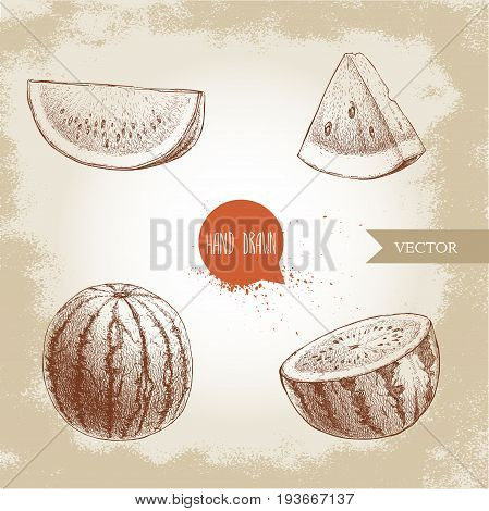 Set of hand drawn sketch style watermelons and watermelon slices. Vintage design fruits. Eco summer food illustrations.
