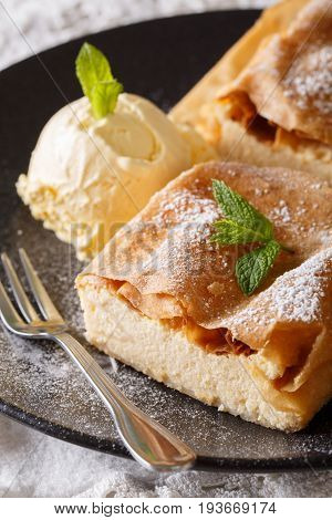 Healthy Strudel With Cottage Cheese, And Vanilla Ice Cream Macro On A Plate. Vertical