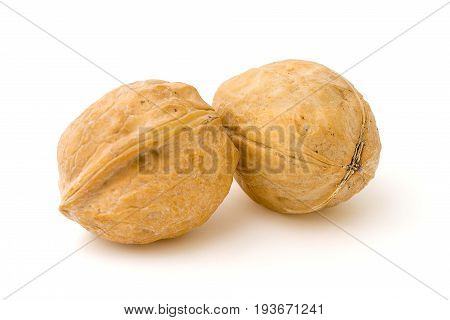Two walnut isolated on white background. close-up
