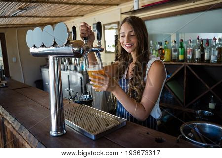 Young beautiful barmaid pouring beer from tap in glass while standing at bar