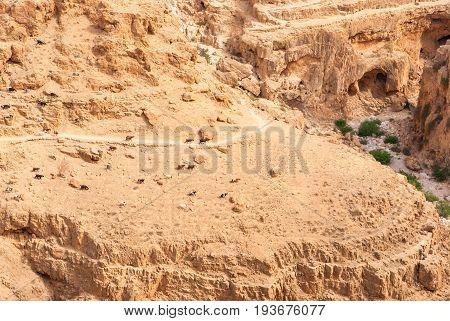 Wadi Qelt in Judean desert around St. George Orthodox Monastery or Monastery of St. George of Choziba Israel