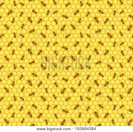 A seamless background with a bee beehive.