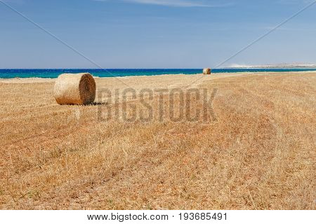 Beautiful Panoramic View On Straw Field With Bales On Sea Coast Near Of Ayia Napa And Cavo Greco, Cy