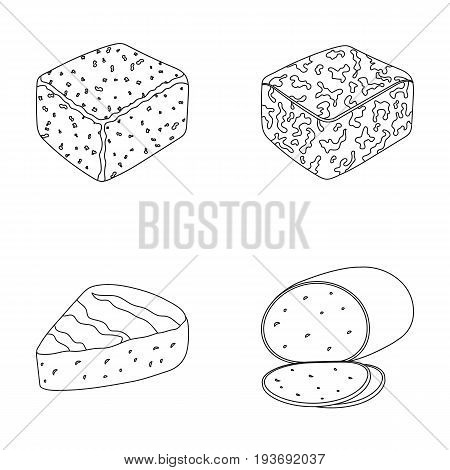 Brynza, smoked, colby jack, pepper jack.Different types of cheese set collection icons in outline style vector symbol stock illustration .