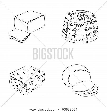 Mozzarella, feta, cheddar, ricotta.Different types of cheese set collection icons in outline style vector symbol stock illustration .