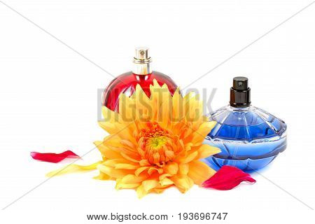 Bottles of essential perfume and flower, over white background.
