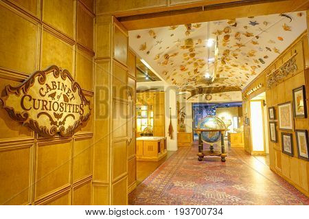 HOUSTON, USA - JANUARY 12, 2017: Cabinet curiosities in a room, with some sea animal on ceiling, inside of the National Museum of Natural Science in Orlando Houston in USA.