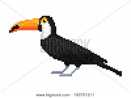 Old school 8 bit pixel art toco/common/ giant toucan isolated on white background. Wild south american animal. Exotic tropical jungle bird. Zoo/national park inhabitant. Summer vacation character.