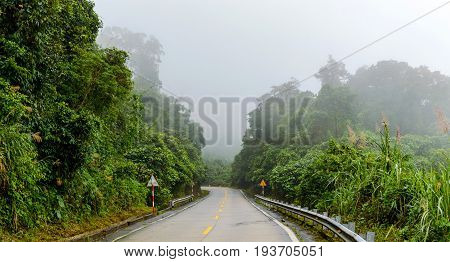 Highway In The Jungle