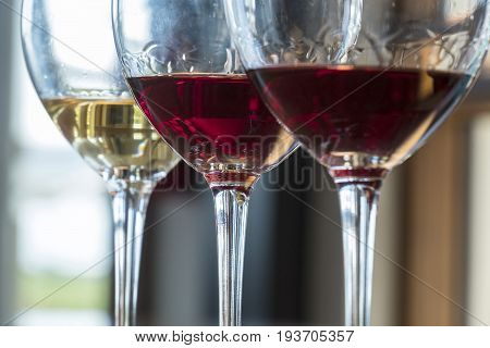 Tasting a Flight of Three Wines in a Winery
