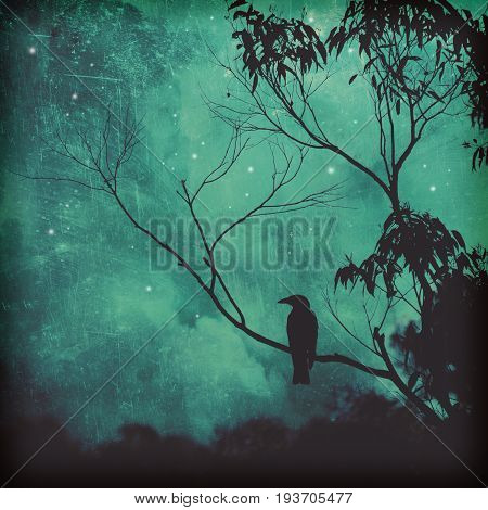 Moody silhouette of a black songbird perched in a tree against a starlit evening sky. Grunge textured photo.