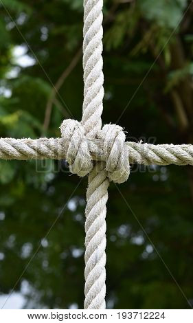 Rope knot line tied together with nature background,as a symbol for trust, teamwork,harmony or collaboration.