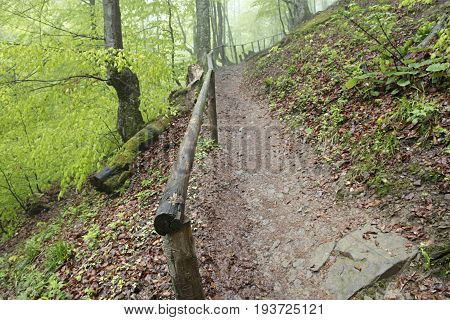 Mountain narrow path with an old wooden handrail in a damp forest rises up the hill