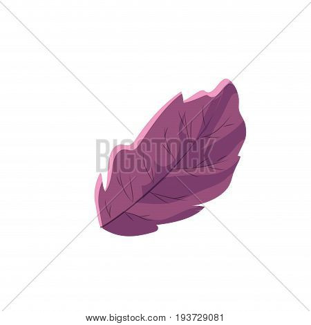 chives plant ingredient to condiment of food vector illustration