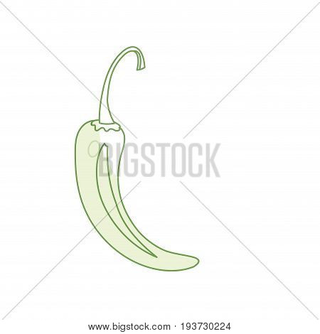 silhouette cayenne chili natural vegetable nutrition vector illustratioon