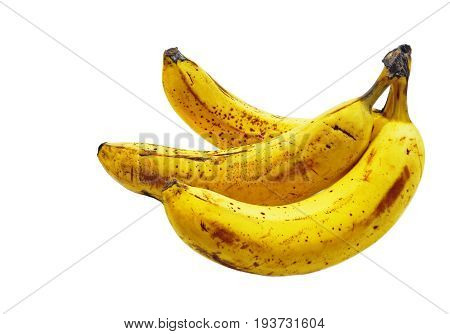 Three juicy ripe banana yellow with brown spots and dots to burst skins - signs of maturity. Isolated on white background, closeup