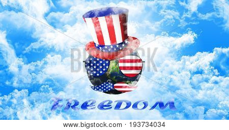 Planet Earth With Uncle Sam's Hat, Sunglasses And Mustaches. United States Of America Flag. Freedom
