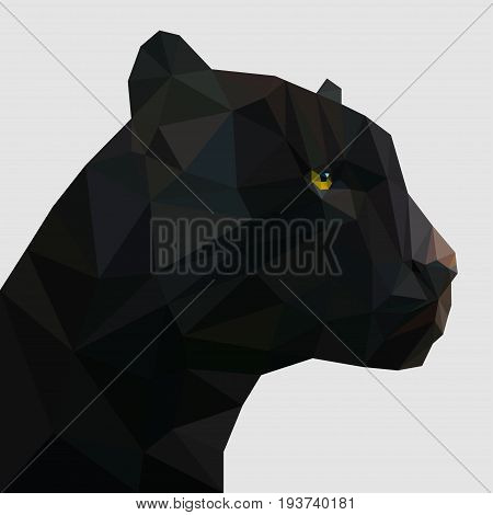 Panther in low poly triangular style. Vector illustration