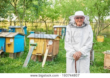 Shot of a cheerful senior beekeeper posing t his apiary copyspace beehives beekeeping apiculture profession experience concept.