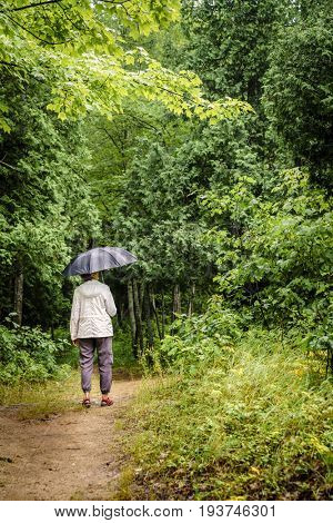 Woman with umbrella is hiking in the forest during rain