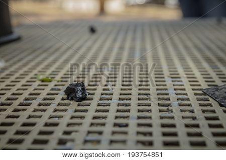 Piece Of Burnt Wood Coal On Metal Table