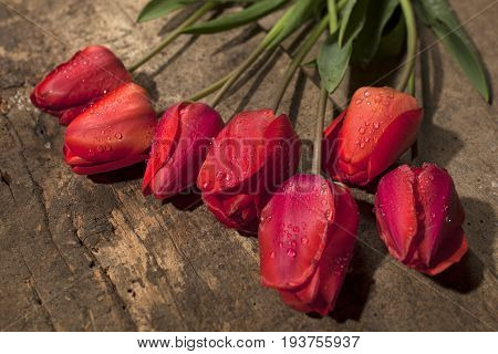 Bouquet Of  Red Tulips On Vintage Wooden Surface Background